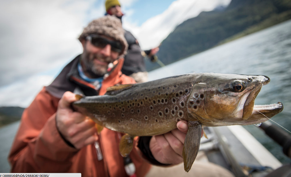 Photos: Trout Fishing in Chilean Patagonia