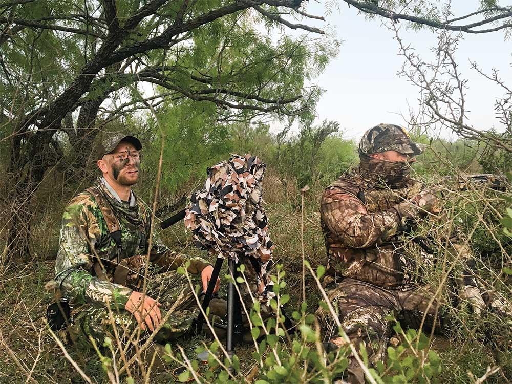 two hunters calling turkeys in heavy foliage