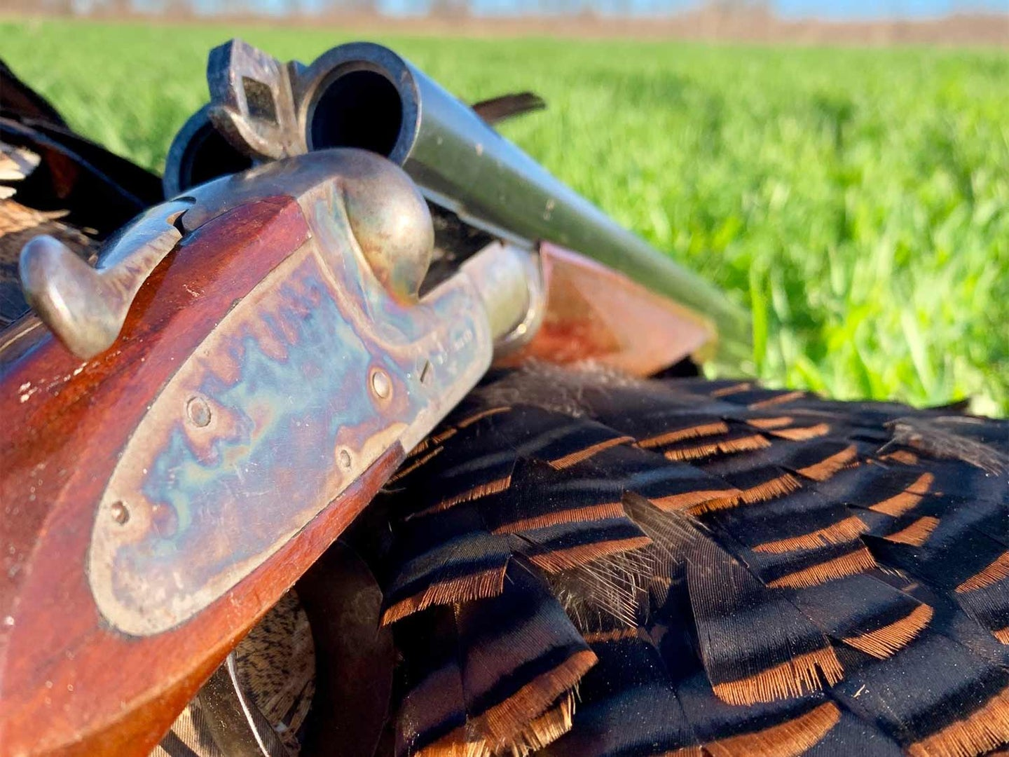 How to Know Whether You Should Restore or Refurbish an Old Hunting Gun