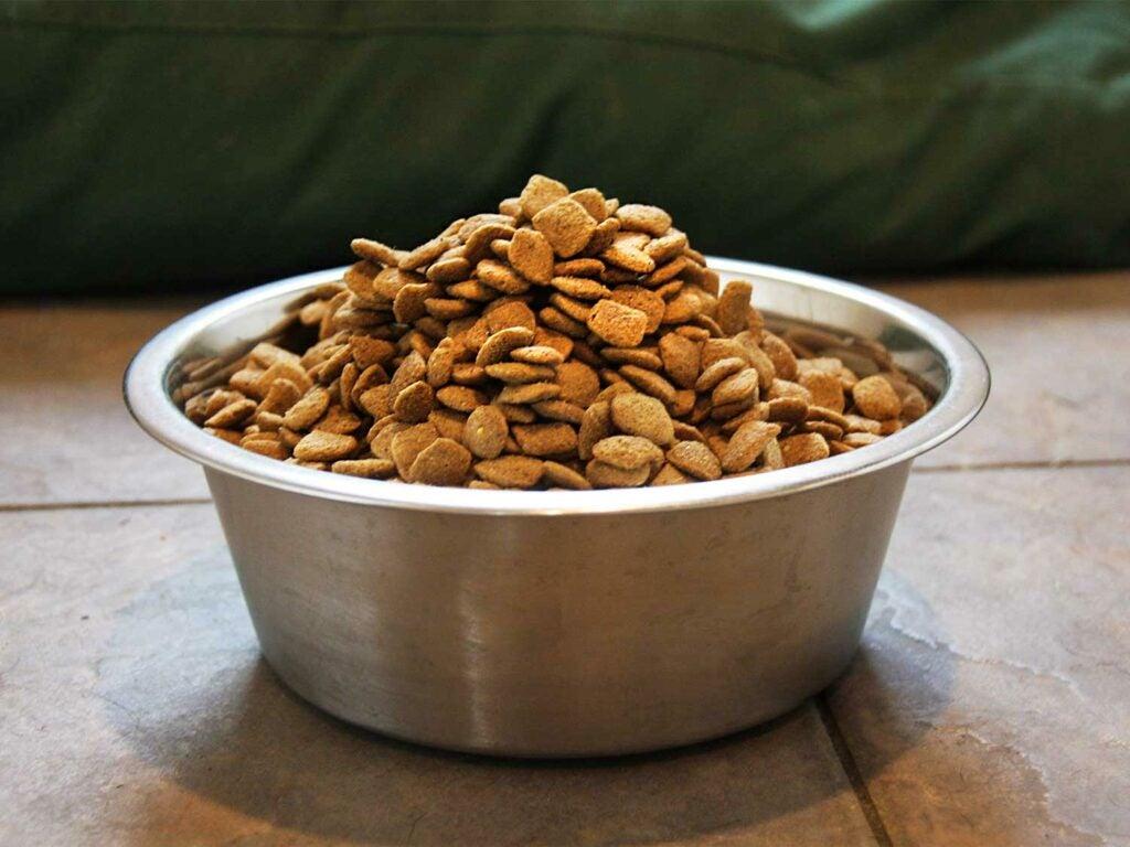 a bowl full of dog food