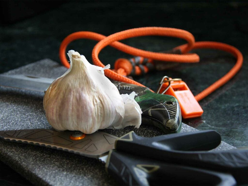 garlic bulb in hunting gear