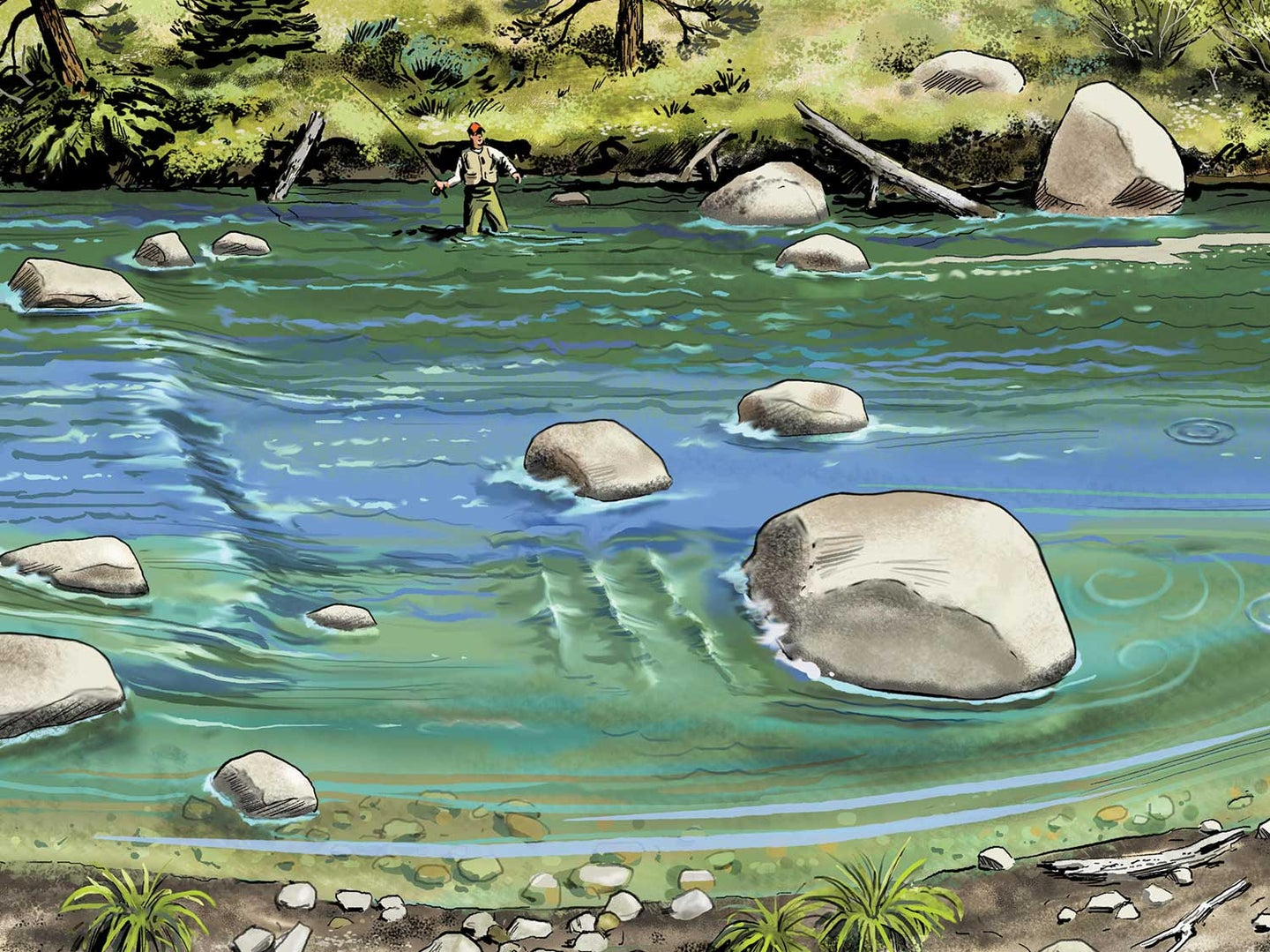 How Reading Trout Water Can Make You a Better Outdoorsman