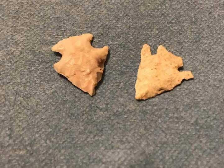 preserved arrowheads