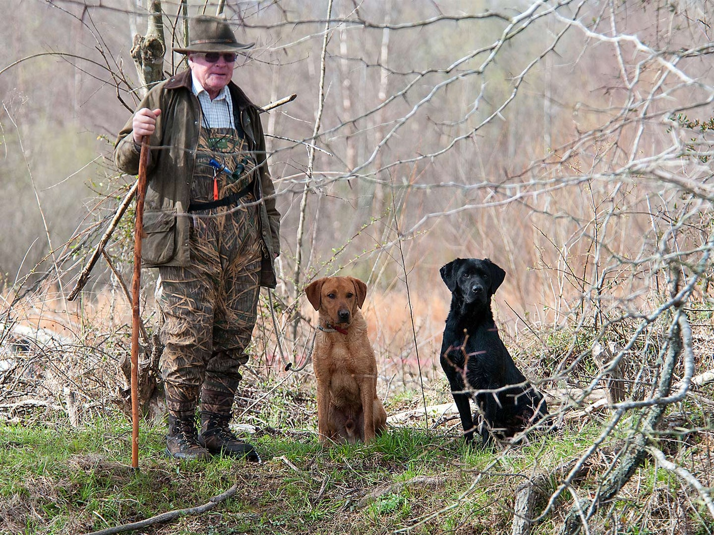 Robert Milner standing beside his two hunting dogs