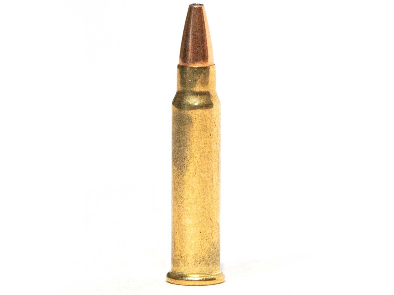 The .17 HMR ammo cartridge