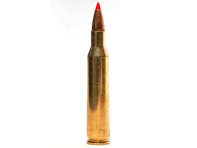 The .257 Roberts ammo cartridge