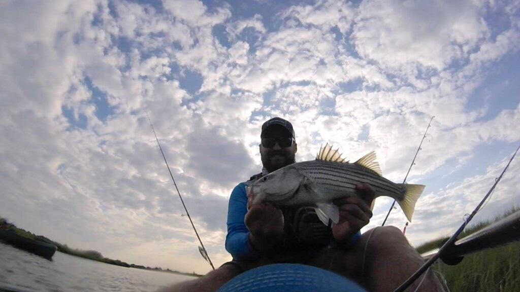 Field & Stream SEO Editor Ben Duchesney holds up a striped bass caught in the saltwater marsh.
