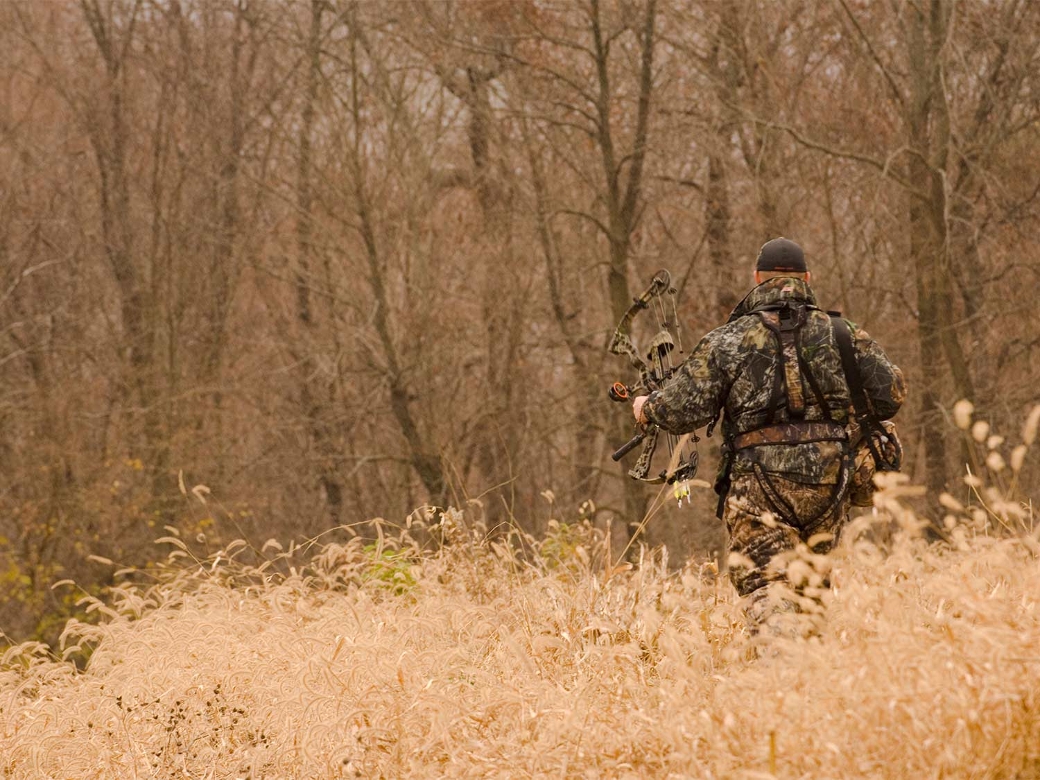 Bow hunting in Pike County Illinois