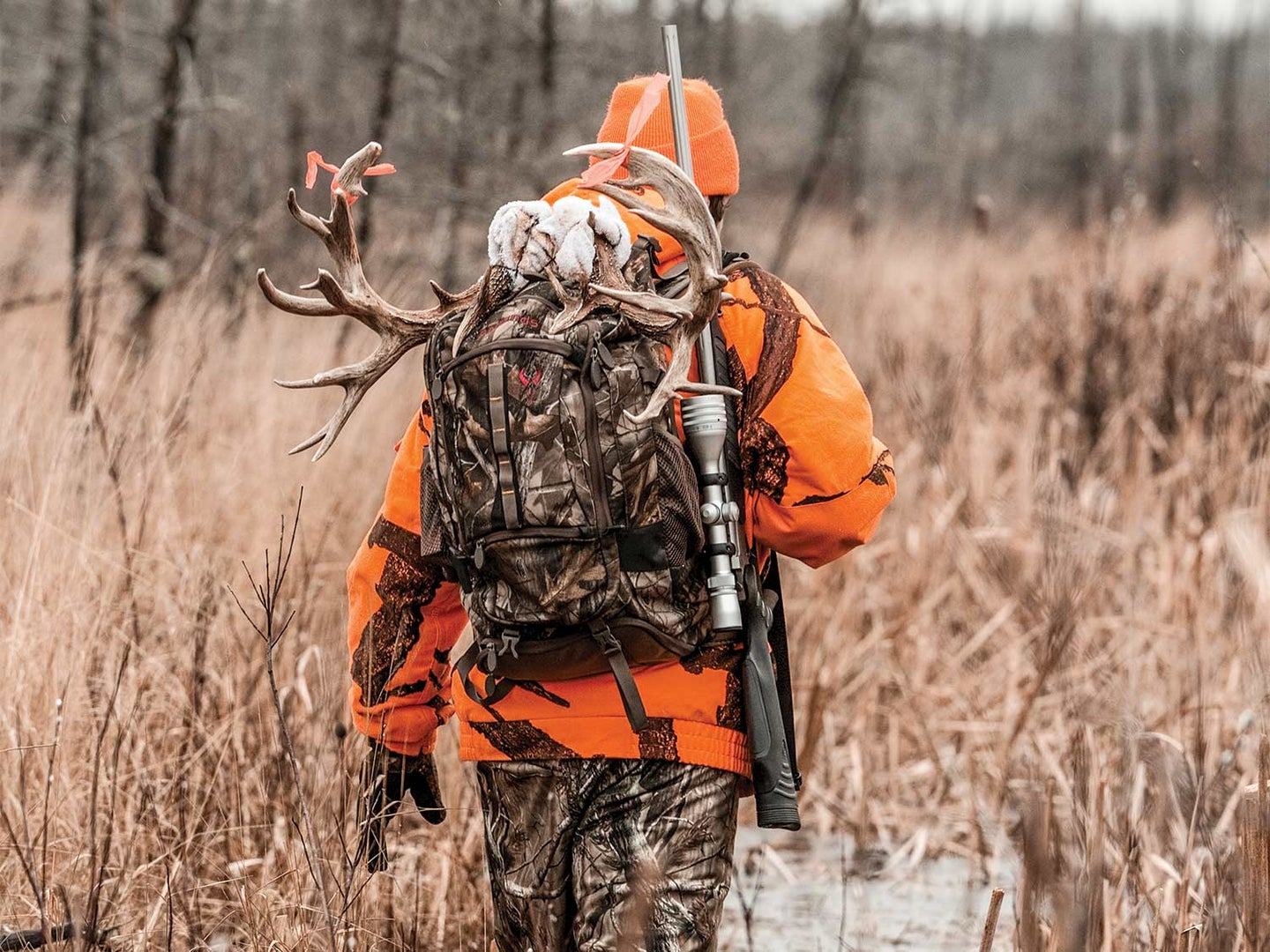 Why Testing for CWD is One of the Biggest Obstacles to Fighting it