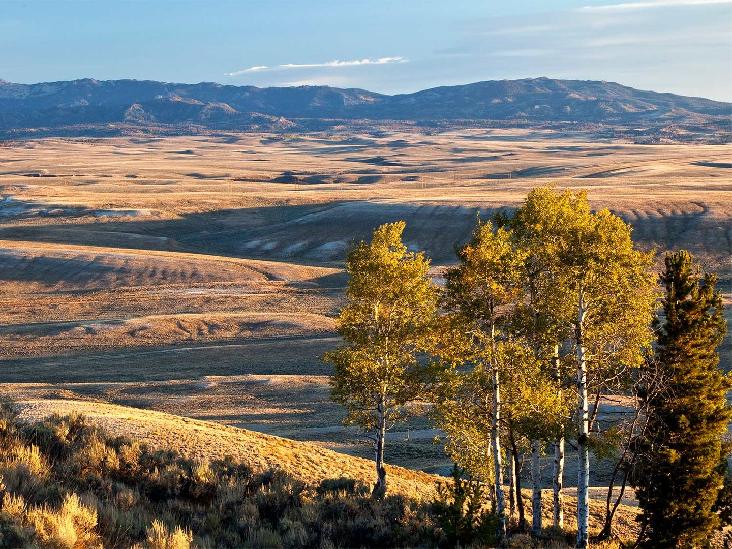 Anti-Public-Lands Advocate Now in Charge of 250 Million Acres of BLM Land