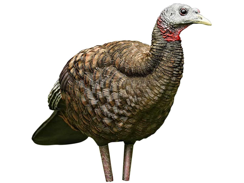 Avian-X Breeder Hen Turkey Decoy