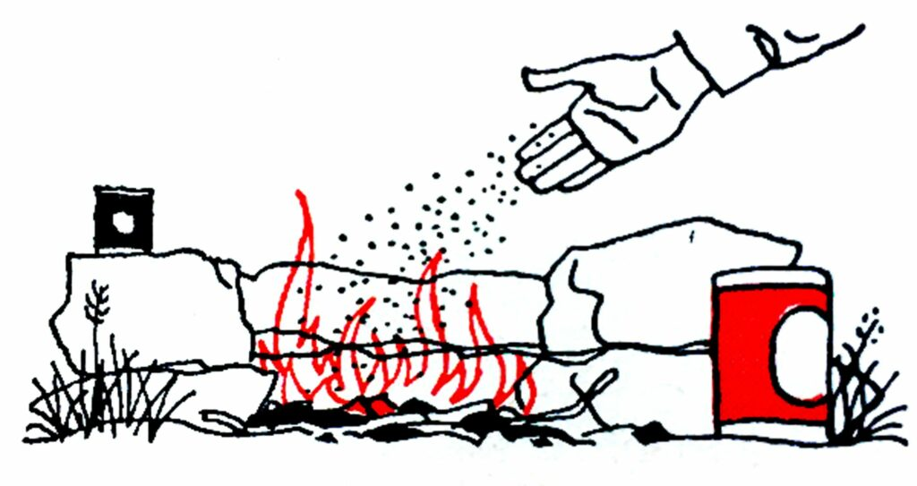 Pouring salt onto meat over a campfire.