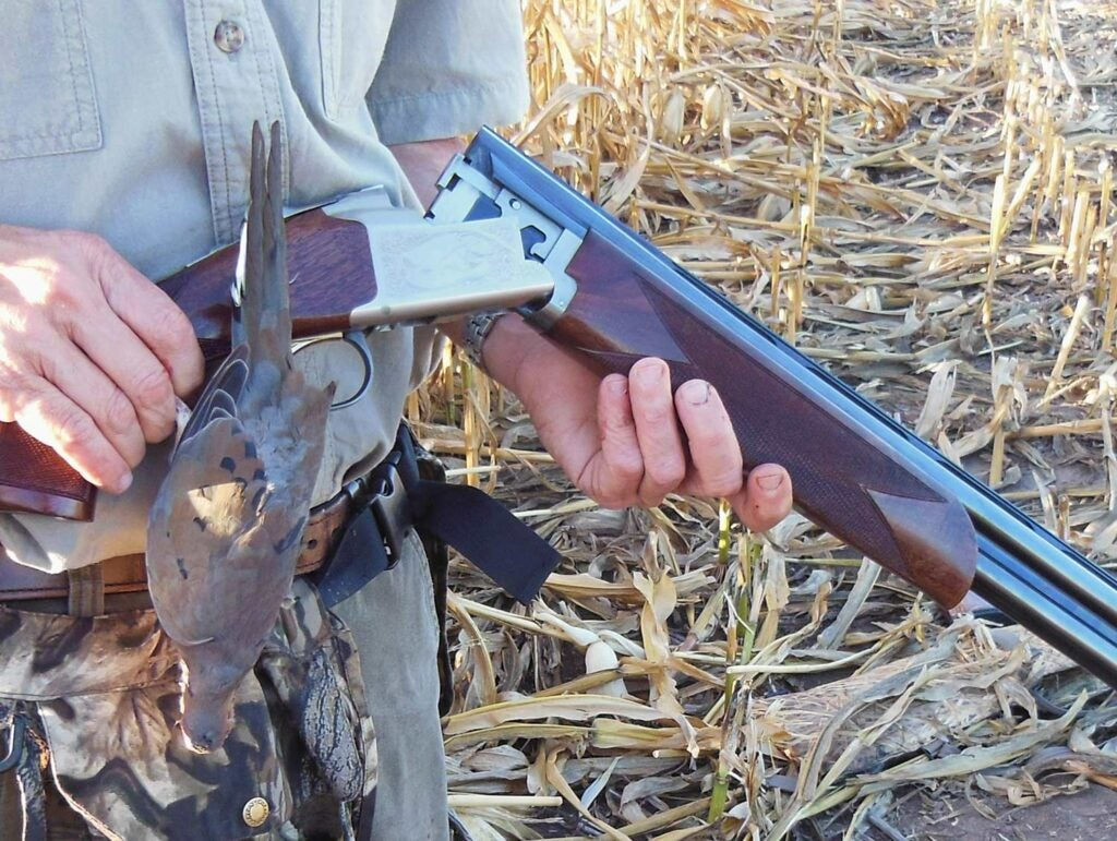 Browning 725 dove hunting