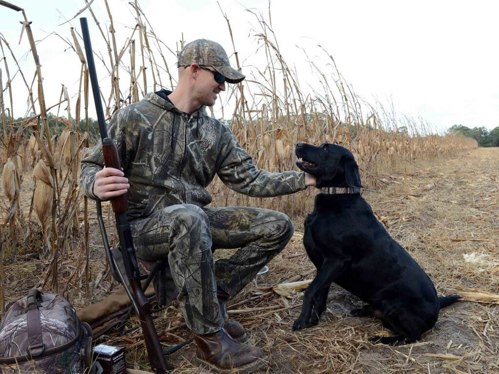 hunter and dog in a field