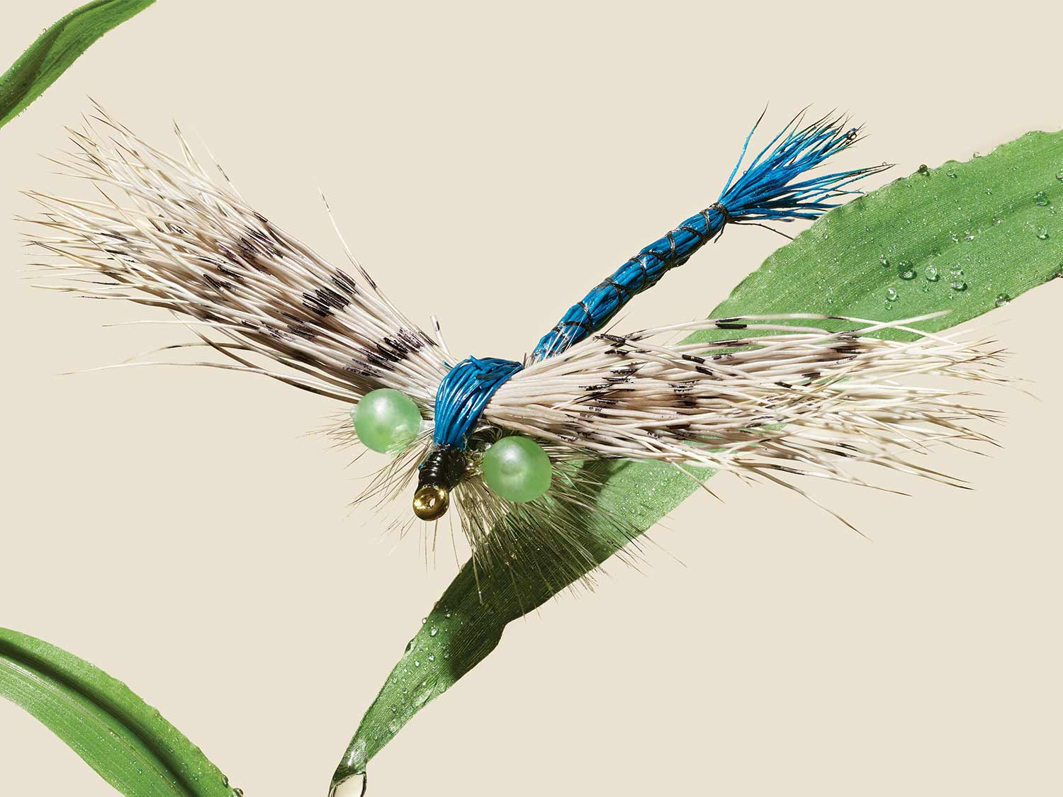 Flyfishing Tips for Catching Late-Summer Trout on Terrestrials