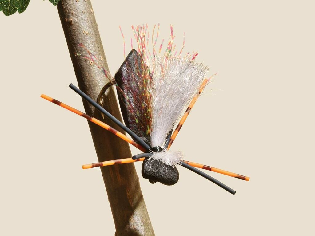 fly fishing lure spider