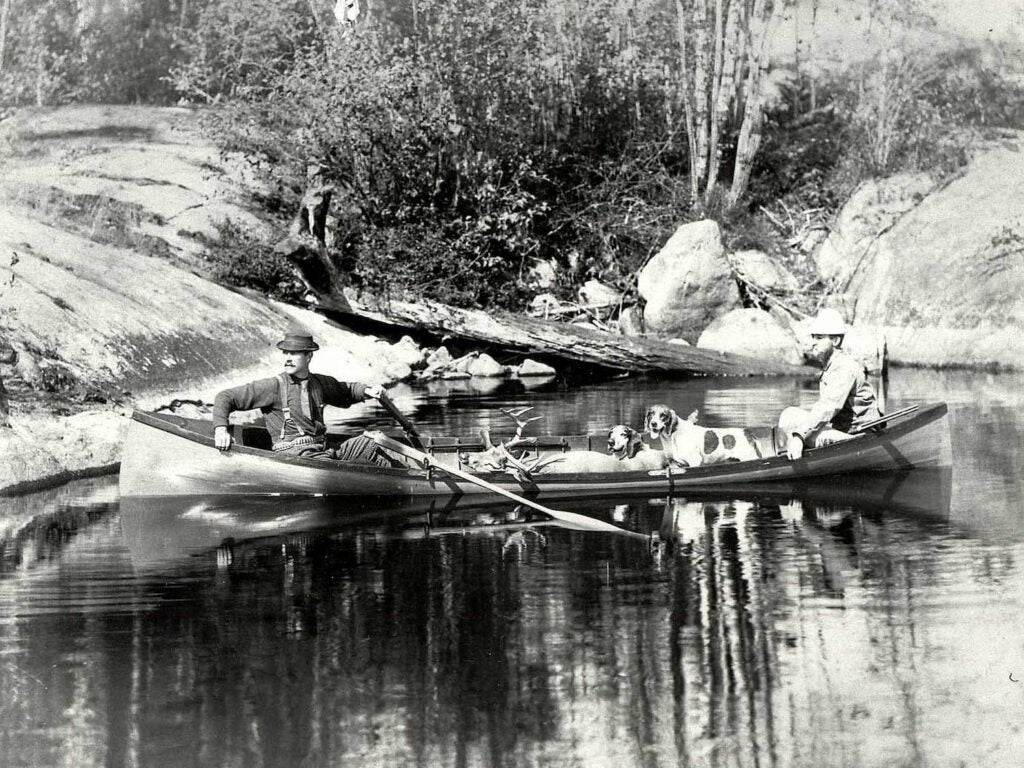Charles Oblenis and a guide in a guide boat with dogs and deer, circa 1889.