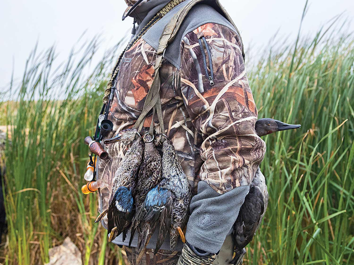 waterfowl hunter with limit of teal