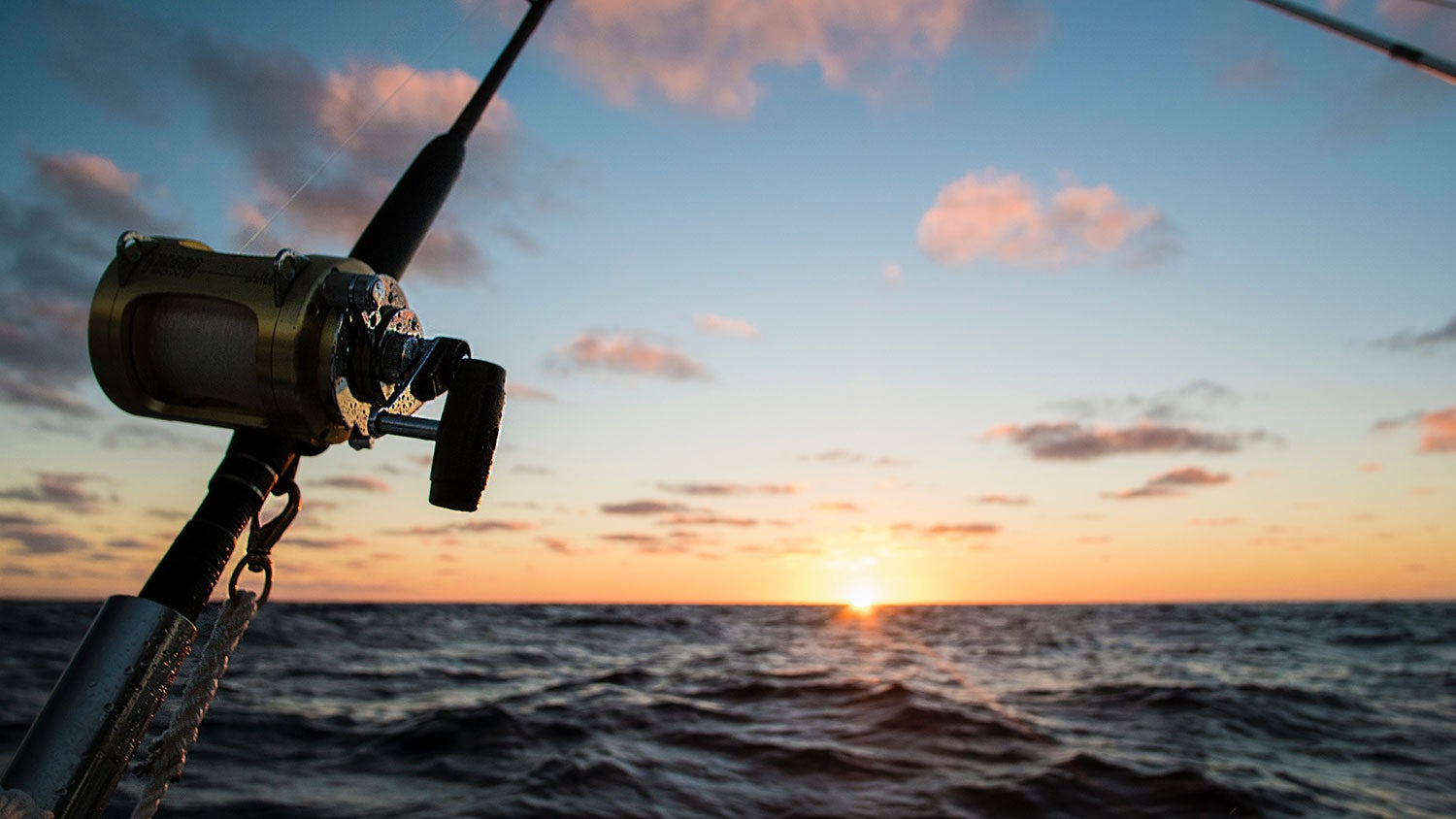Three Things To Know Before You Buy A Conventional Fishing Reel