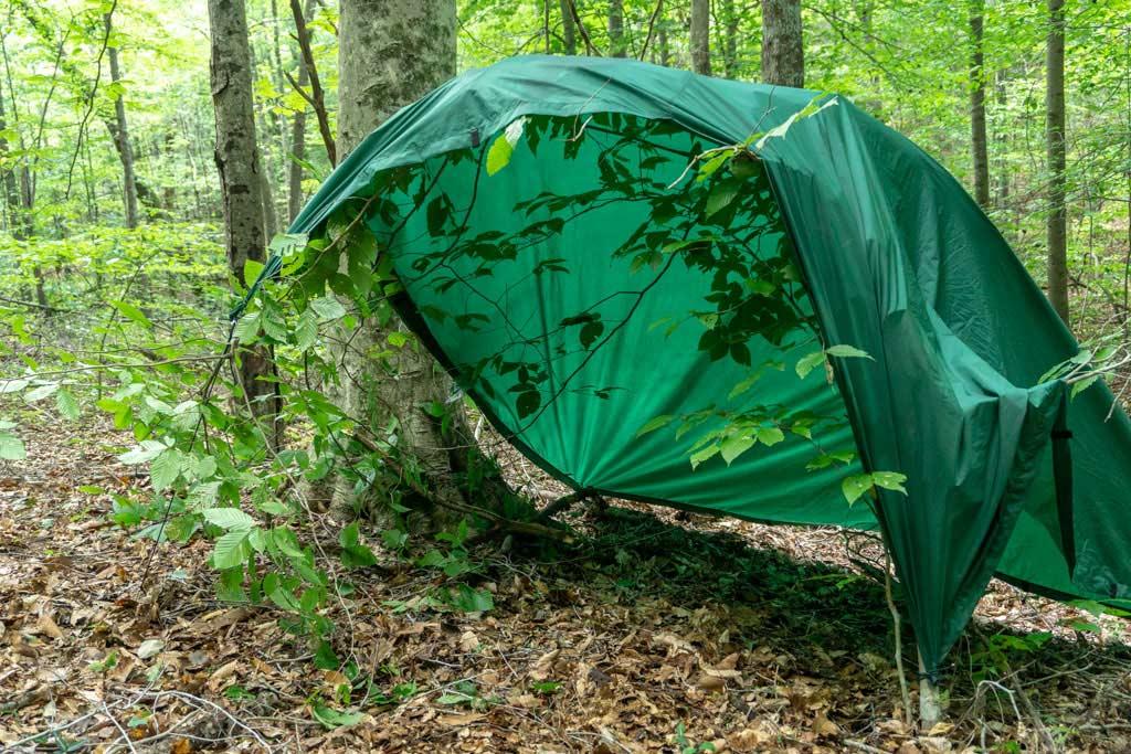 a tarp bent over a sapling