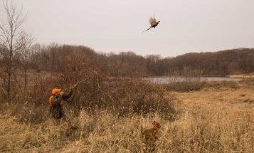 10 Tips for Patterning Your Shotgun for Hunting Season