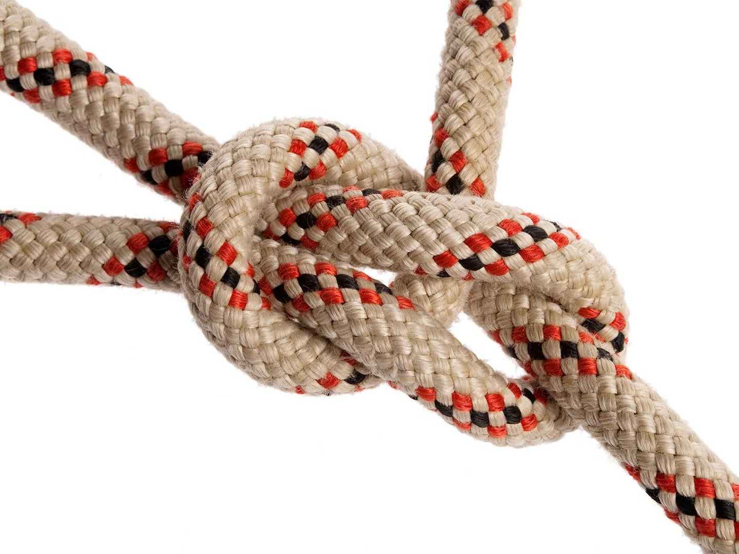 An up close image of a bowline knot.