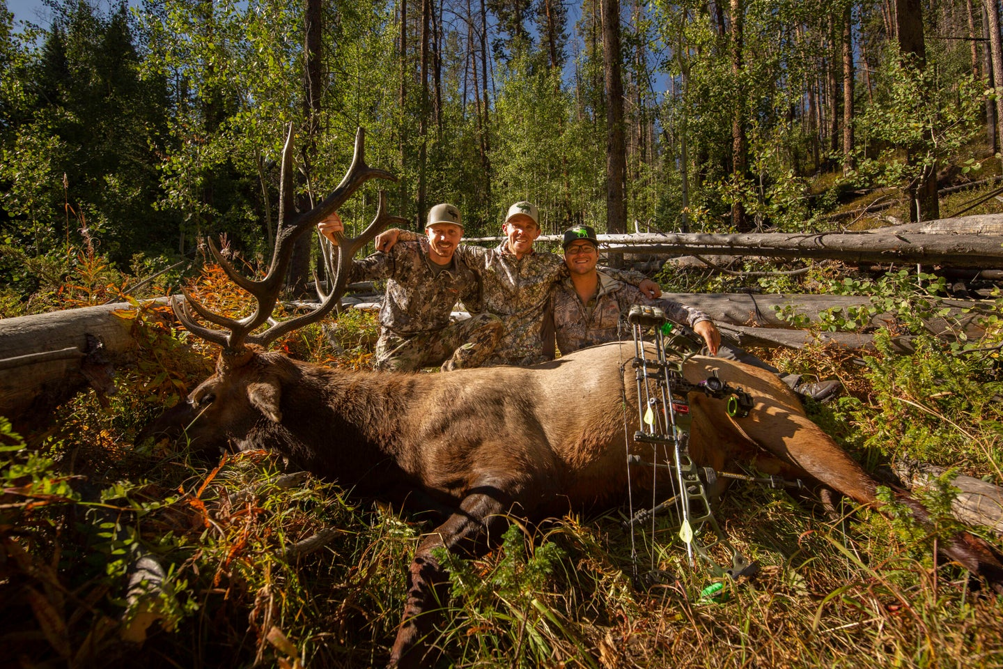 11 Elk Hunting Must-Haves for a Successful Season