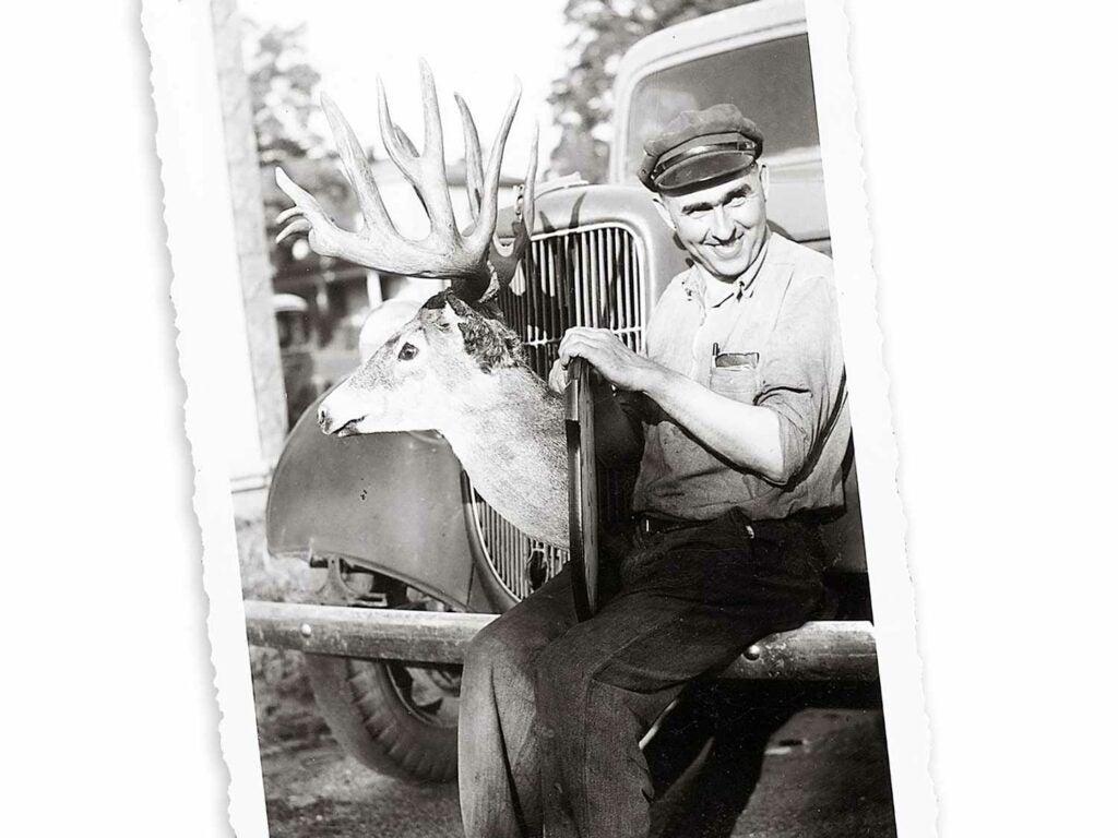 the Roosevelt Luckey deer