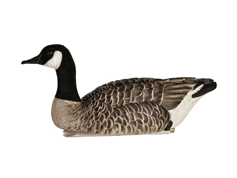 Goose decoy