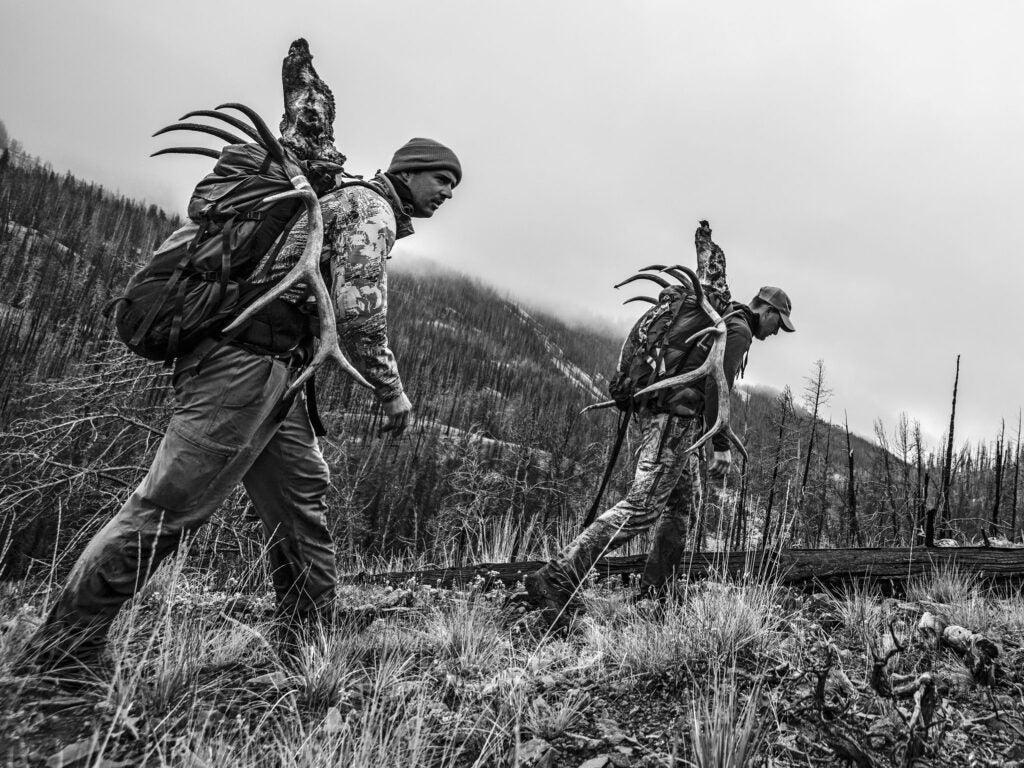Successful public-land hunters begin a long hike out.