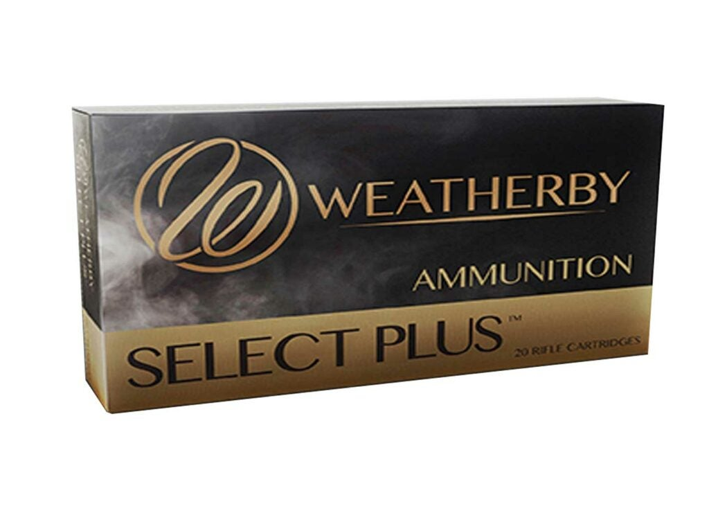 .340 Weatherby Magnum loaded with 250-grain Partitions.