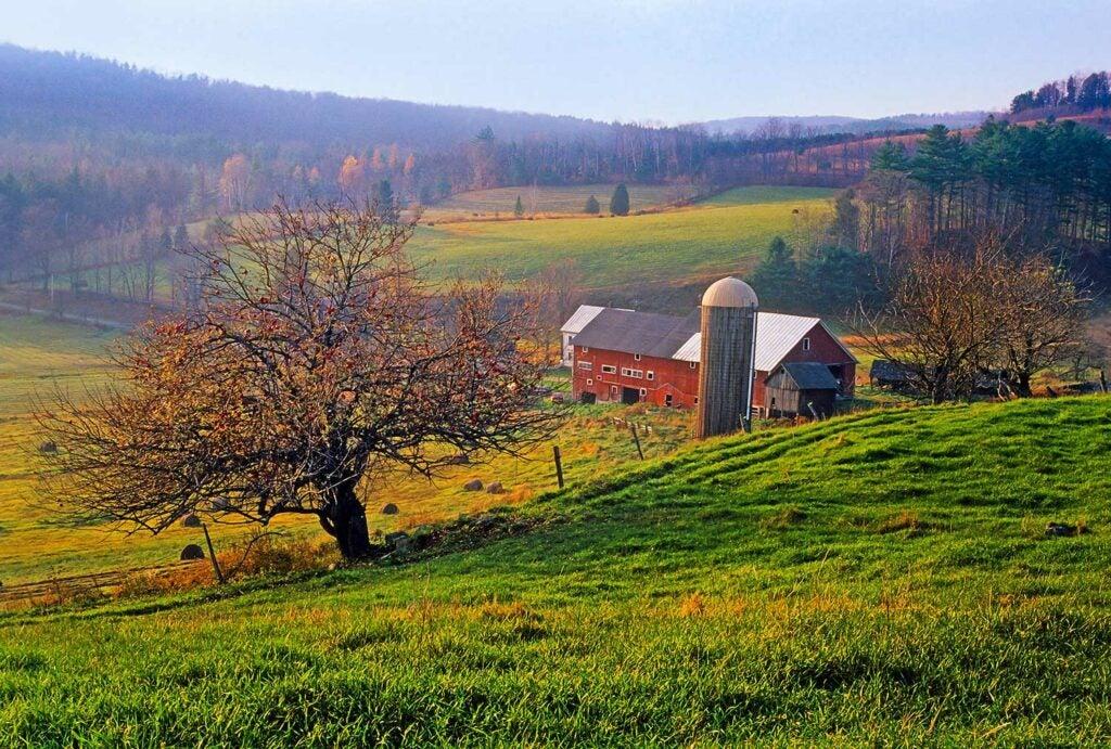 apple farm field and barn