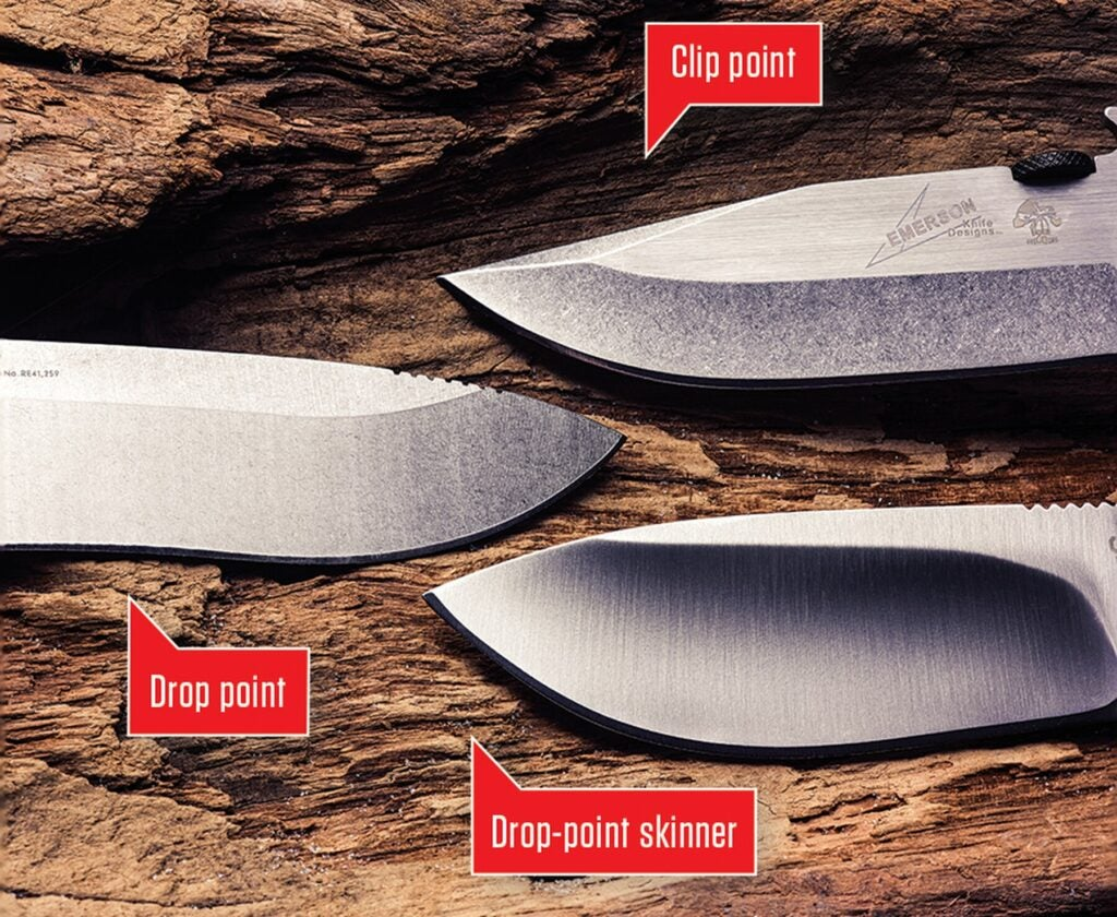 Most field knives have a drop point or clip point.