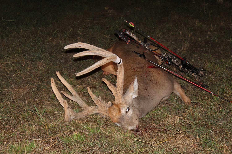 Kentucky Hunter Shoots a New Record Velvet Whitetail