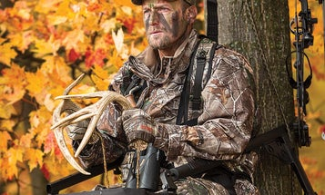 How to Rattle in Whitetail Deer in the Fall