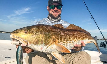 How to Fish for Bull Redfish in the Fall
