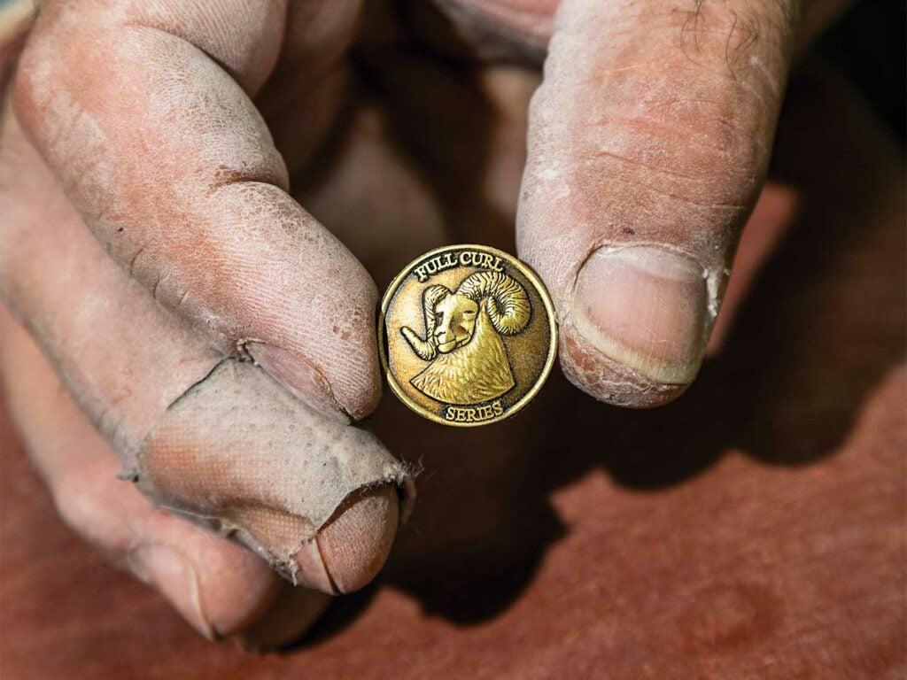 a coin featuring a bighorn ram