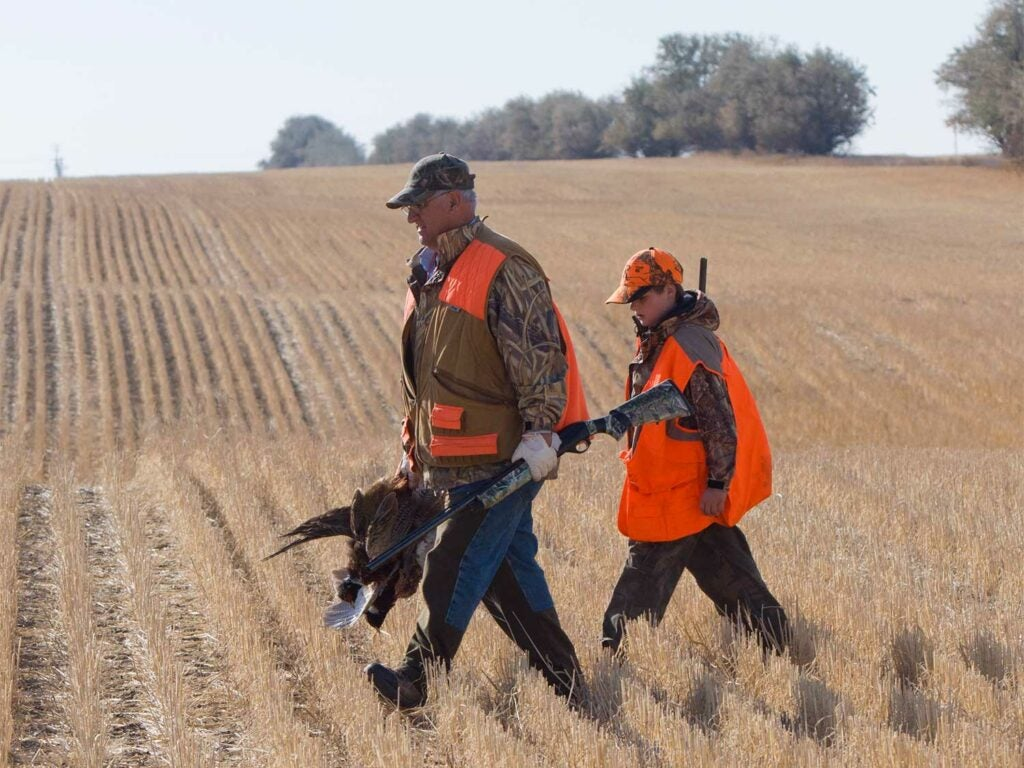 a father and son hunting pheasants in a field