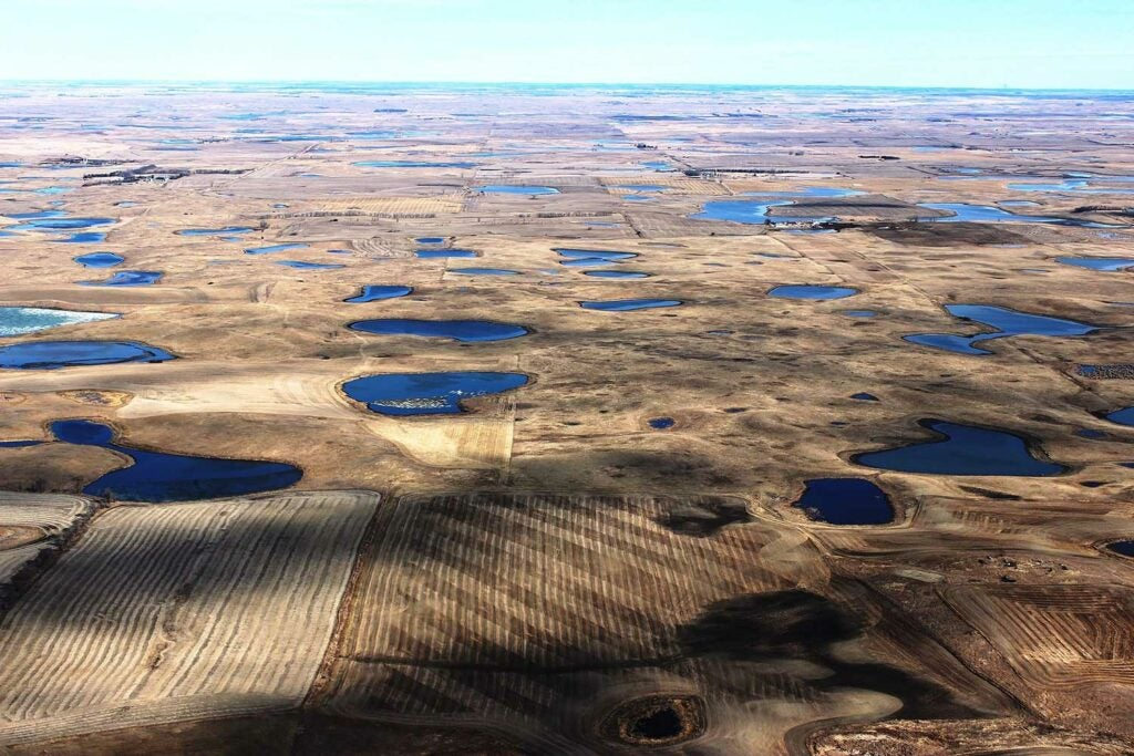 prairie pothole region.