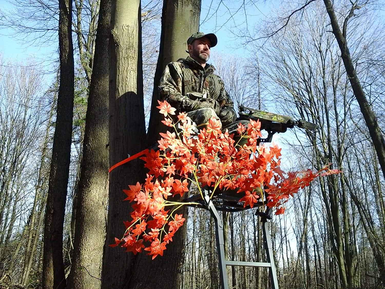 Hunting sitting in tree