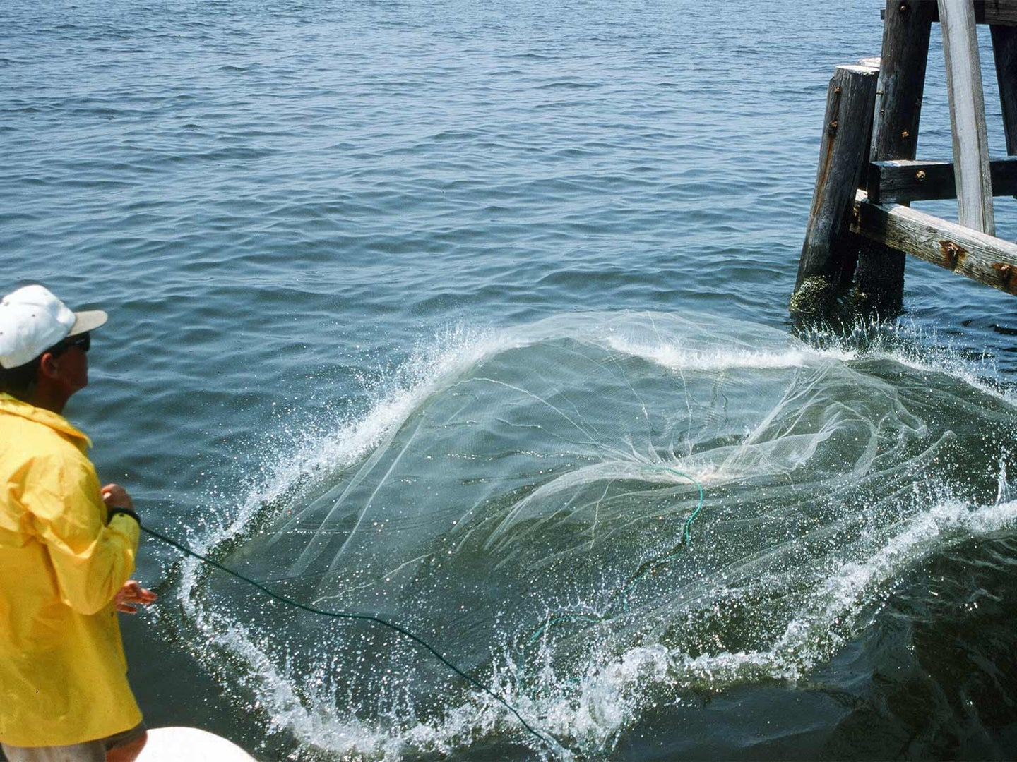 fisherman casting a net in the water