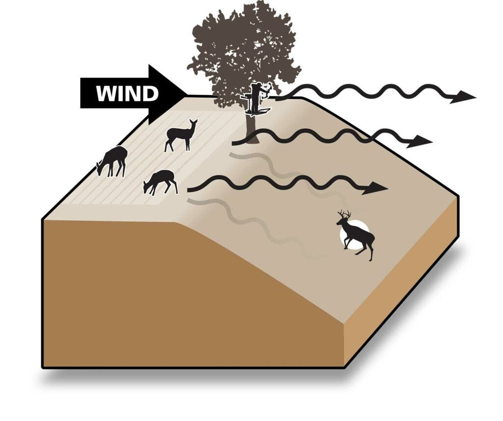 Illustration of a steeped hill and wind direction