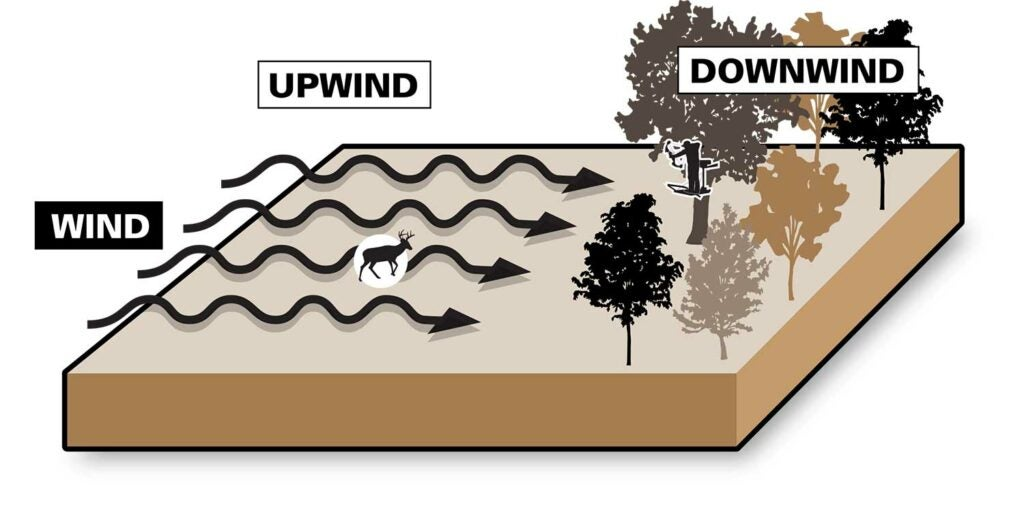 illustration of upwind and downwind weather patterns