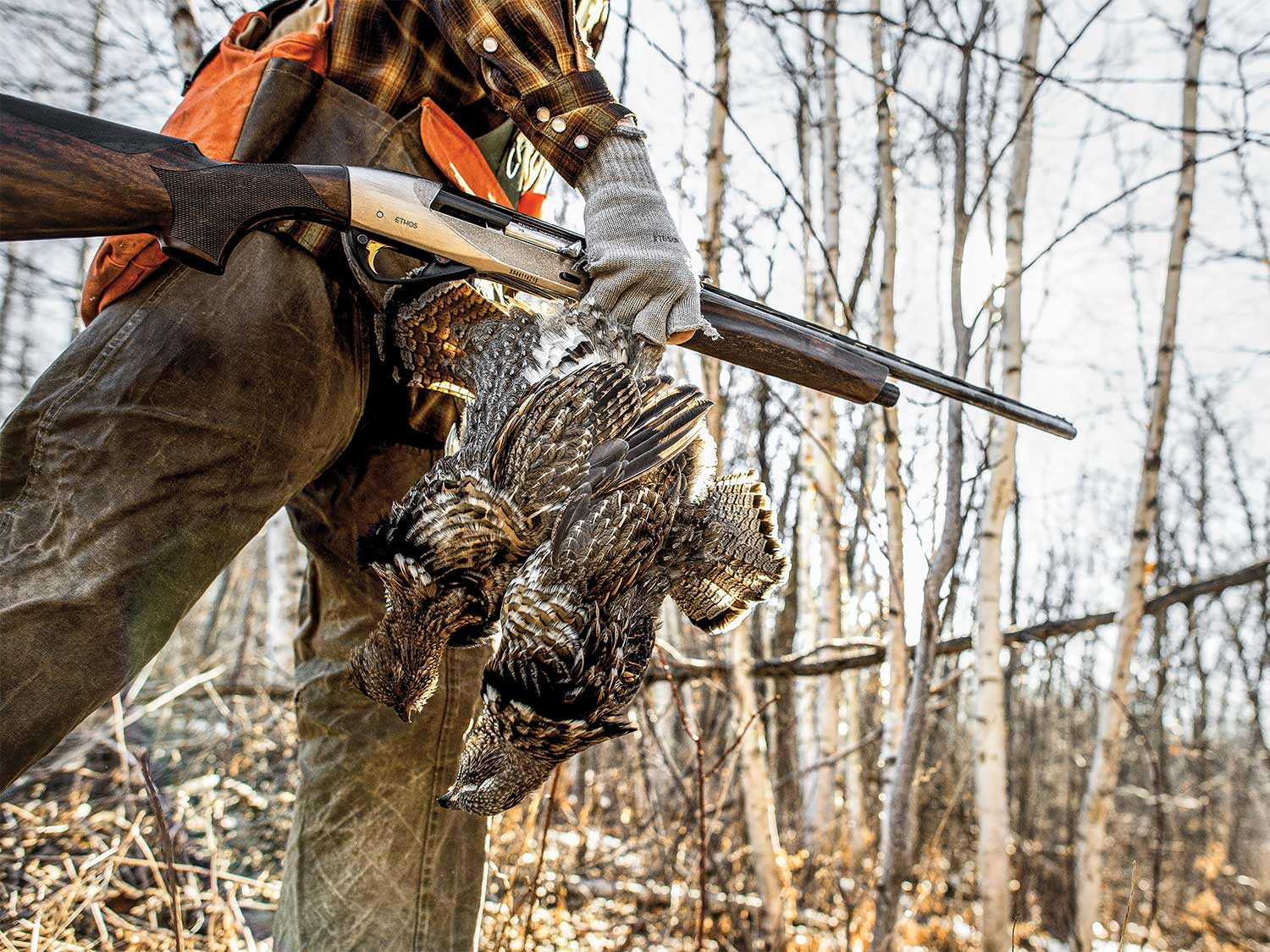 a hunter carrying late-season grouse through the woods.