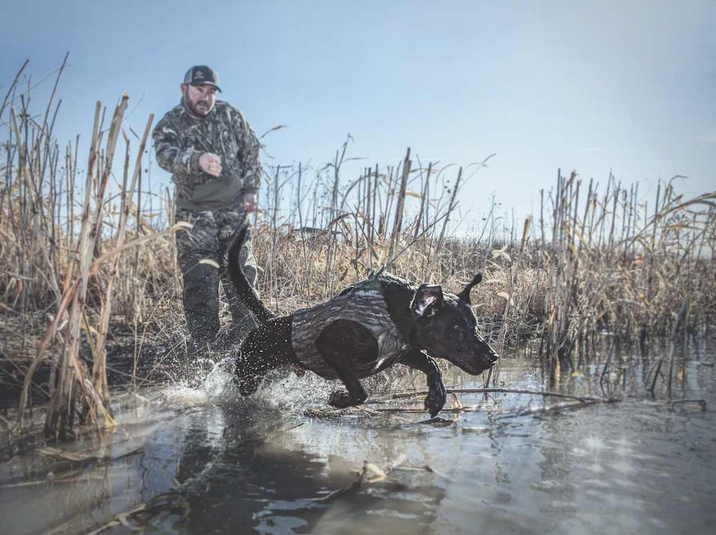 a hunter and their waterfowl hunting dog.