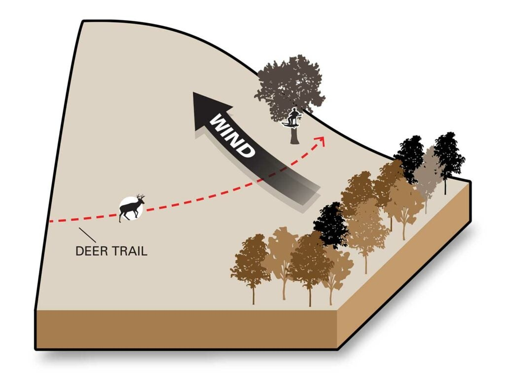 illustration of winds and deer hunting
