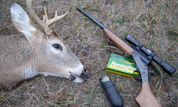 How to Call Whitetails During Each Phase of the Season