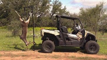 a deer hitched up on a gembel hoist