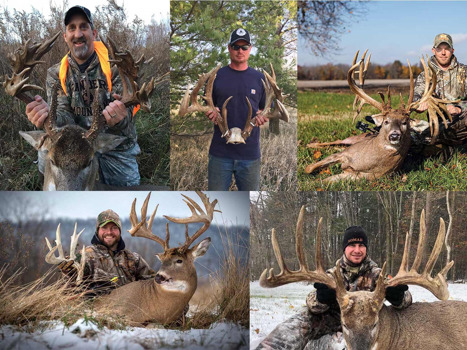 The best bucks of the decade.