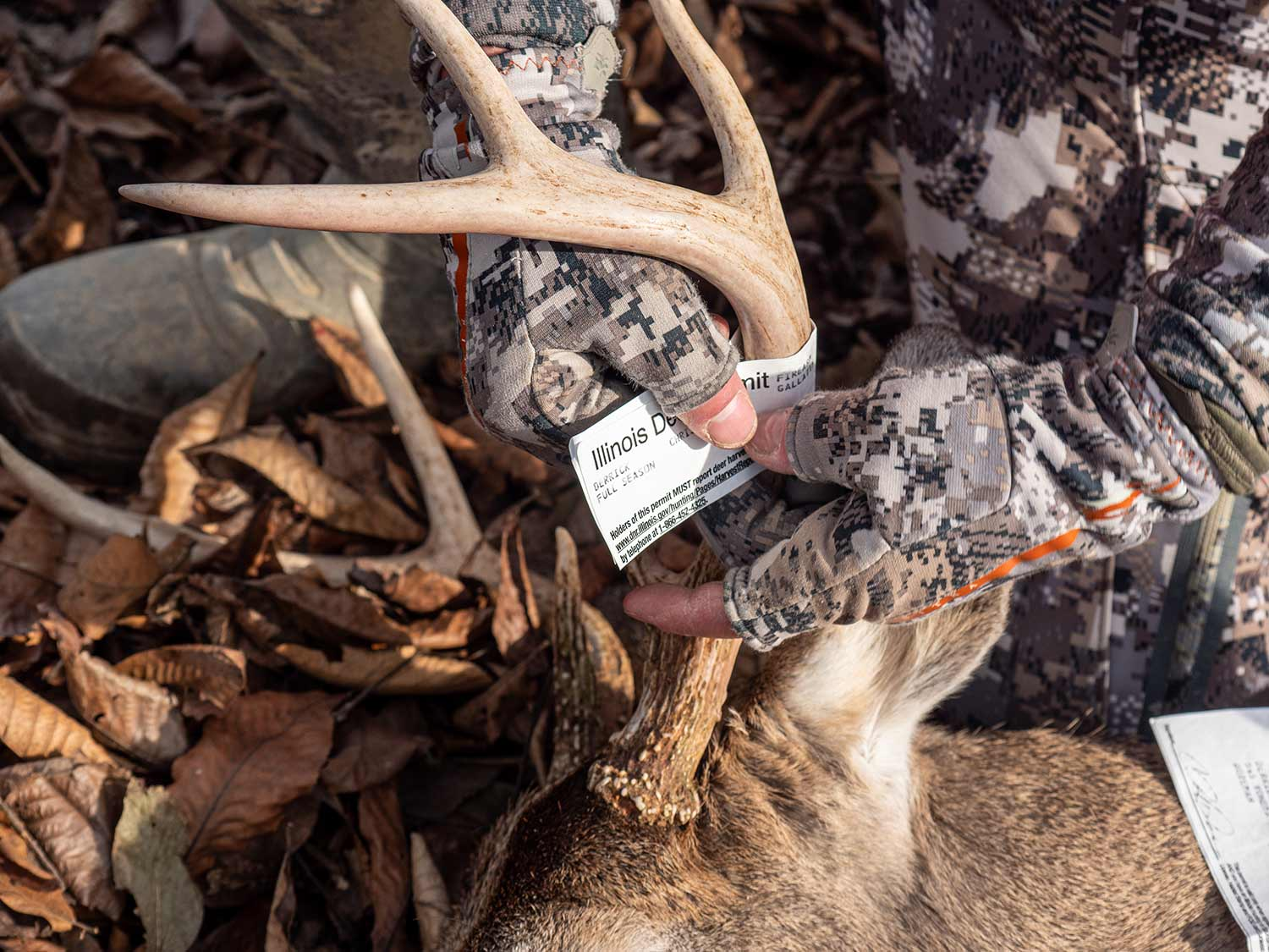 Derrick wraps his tag on a last-minute 8-pointer.